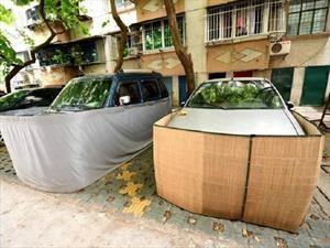 En China protegen a los autos de las ratas