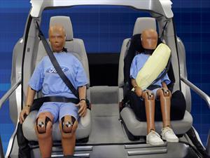 Según Ford, 1 de cada 3 personas no usa el cinturón de seguridad trasero