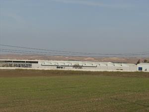 Renault inaugura planta en Argelia