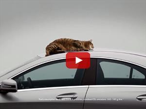 Video: Mercedes Benz CLA comprueba su aerodinámica con un gato