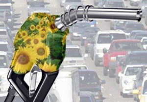 Lo que tenés que saber sobre los biocombustibles