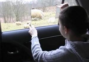 Toyota Window to the World Concept, una manera interactiva de ver el mundo en el auto