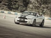 Ford Mustang Shelby GT500 Convertible 2013