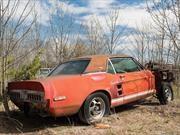 Un Pony abandonado que vale casi 1.5 millones de dólares