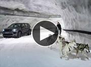 Land Rover Discovery Sport vs trineo tirado por perros, ¿cuál gana?