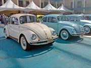 Treffen 2018, la reunión donde Volkswagen es religión