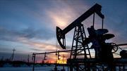 Por qué el precio del petróleo está en caída libre