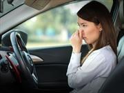 Ford busca eliminar el olor a nuevo que hay en sus autos