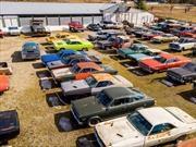 A la venta un terreno con 340 autos clásicos incluidos