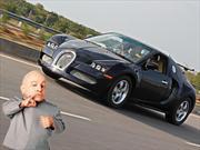 ¿Habías visto a un cachorro de Bugatti Veyron?