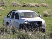 Volkswagen y el Parque Nacional Iberá
