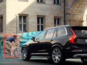 La importancia de las asistencias electrónicas en los autos