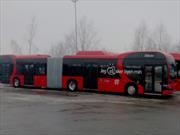 BYD entrega la mayor cantidad buses eléctricos en Europa