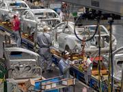 México: Producción y exportación récord