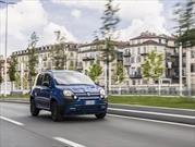 Fiat Panda Waze, el auto que no se pierde