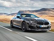 BMW Serie 8 Coupé se reporta listo para debutar