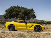Recall a 46 unidades del Chevrolet Corvette Stingray