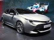 Toyota Auris 2019 se presenta