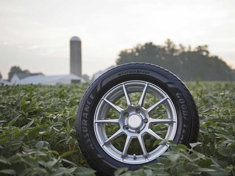 Goodyear desarrolla neumáticos a base de aceite de soya