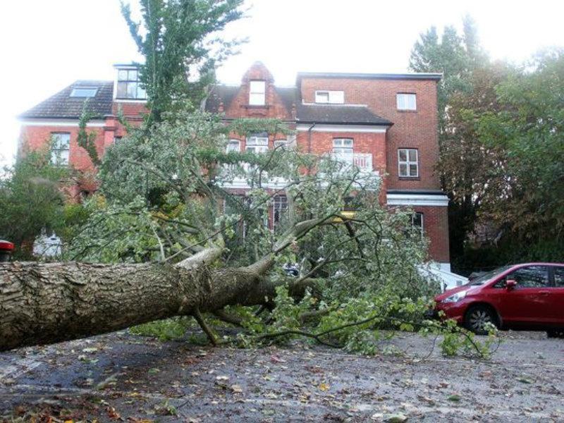 A mal tiempo buena cara: Consejos para tu auto durante una tormenta