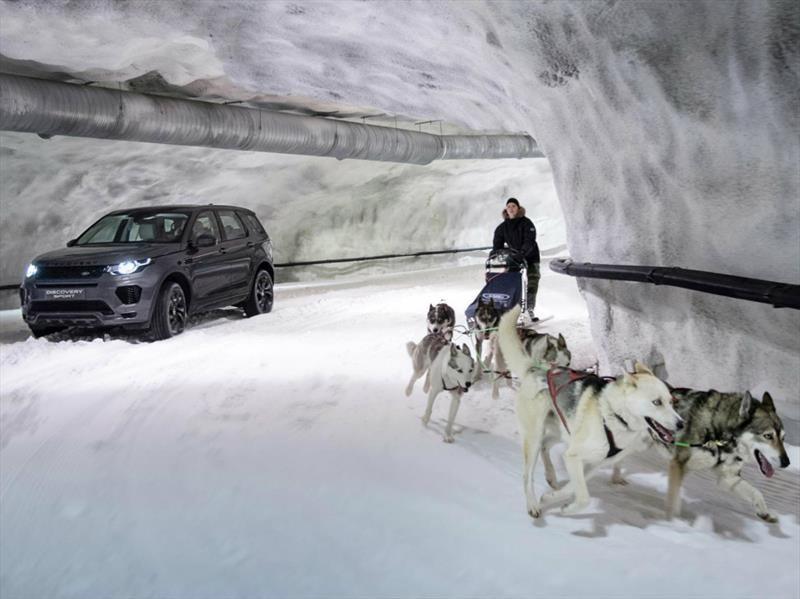Land Rover Discovery Sport se enfrenta a un trineo tirado por perros